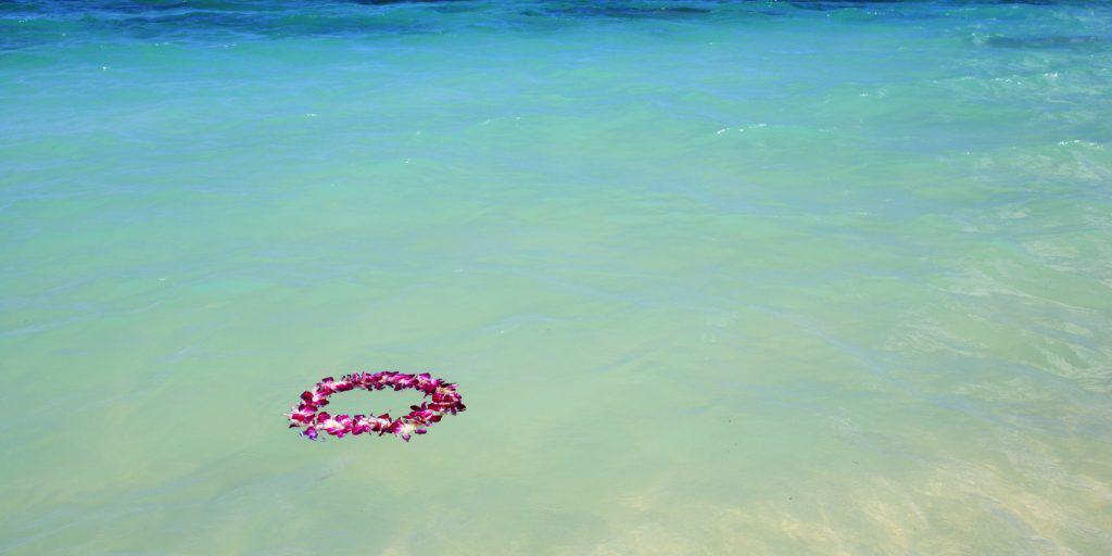 Hawaiian lei floating in the water. RIP Eddie.