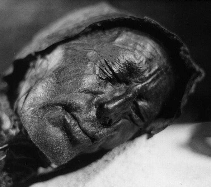 Bog bodies research paper