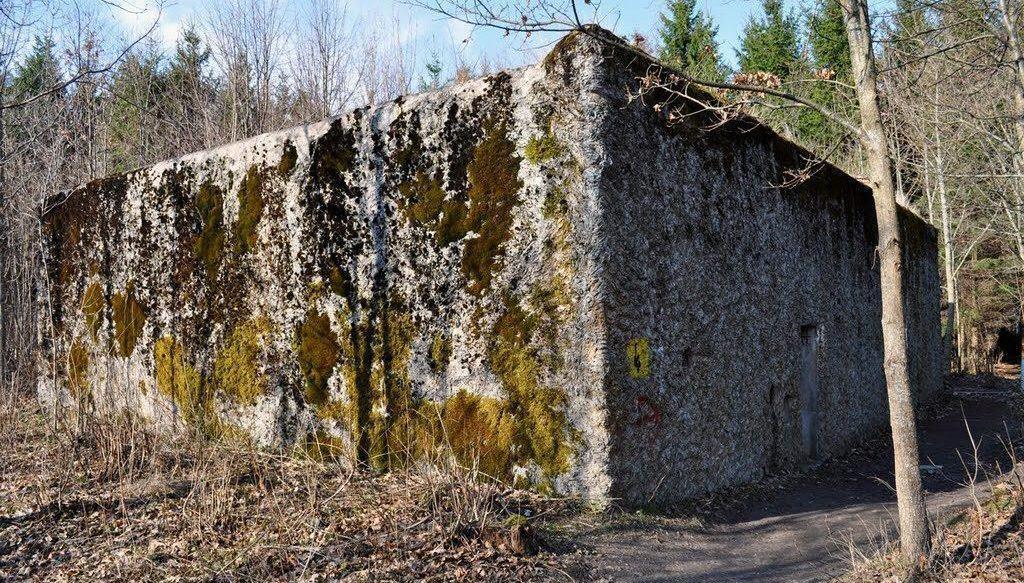 Amber Room History Mamerki Bunker.