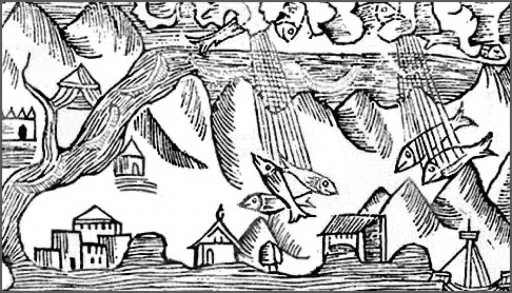 Raining Fish by Olaus Magnus.