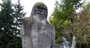 Evidence of Bigfoot