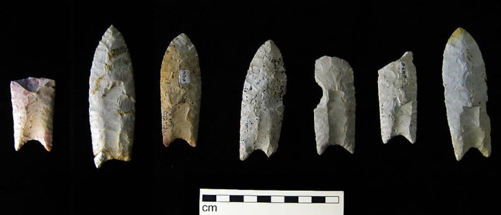 Clovis points from the Rummells-Maske Site, Cedar County, Iowa.