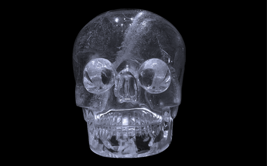 A skull from the British Museum in 2013. .