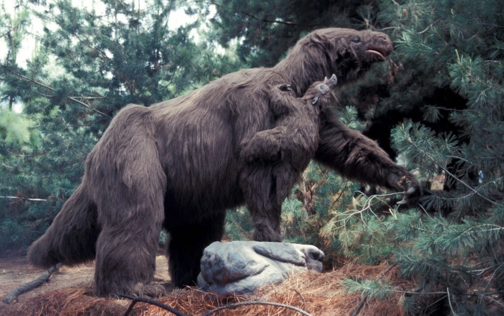 A giant ground sloth. Image: Bruce Coleman.