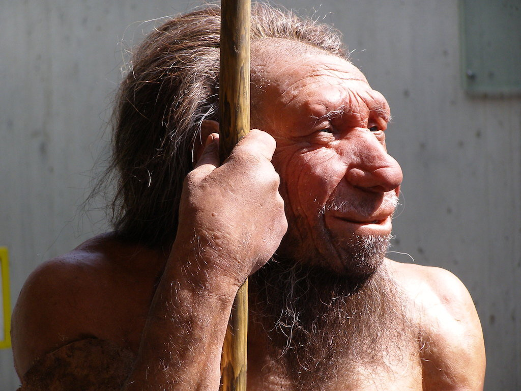 Cloning extinct species such as a Neanderthal is possible, but highly unlikely to be approved.