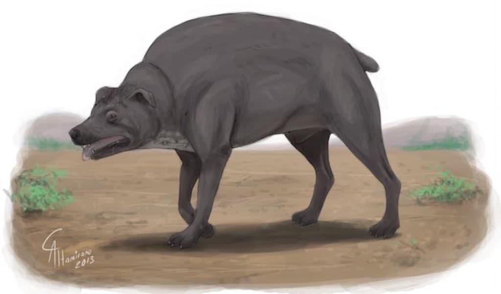 hellhound of bungay