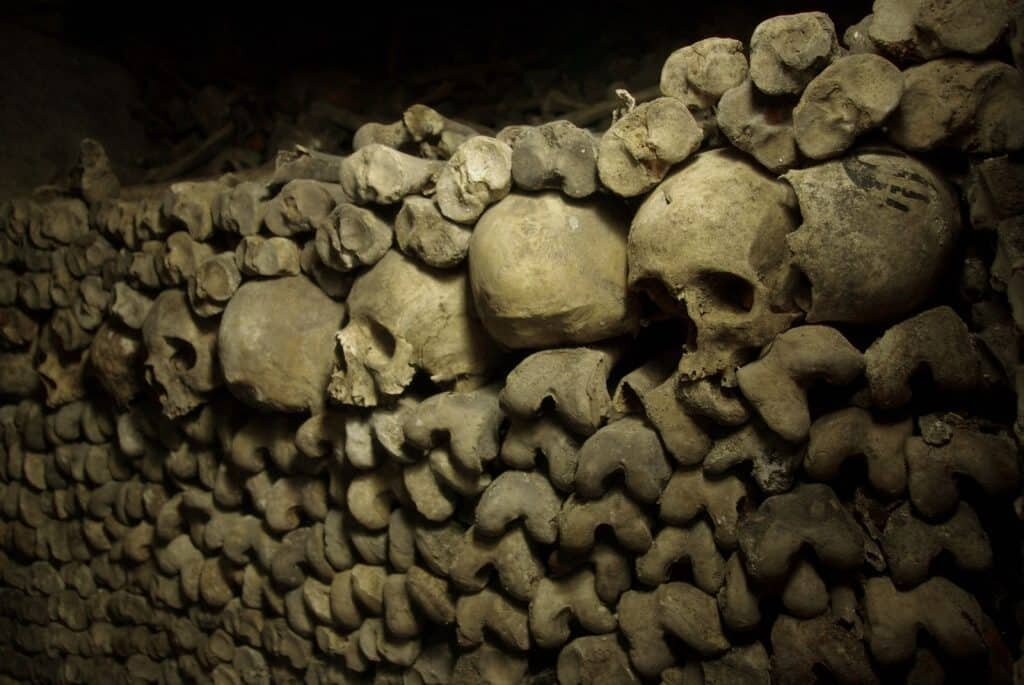 A wall of human skeletons at the Paris Catacombs.