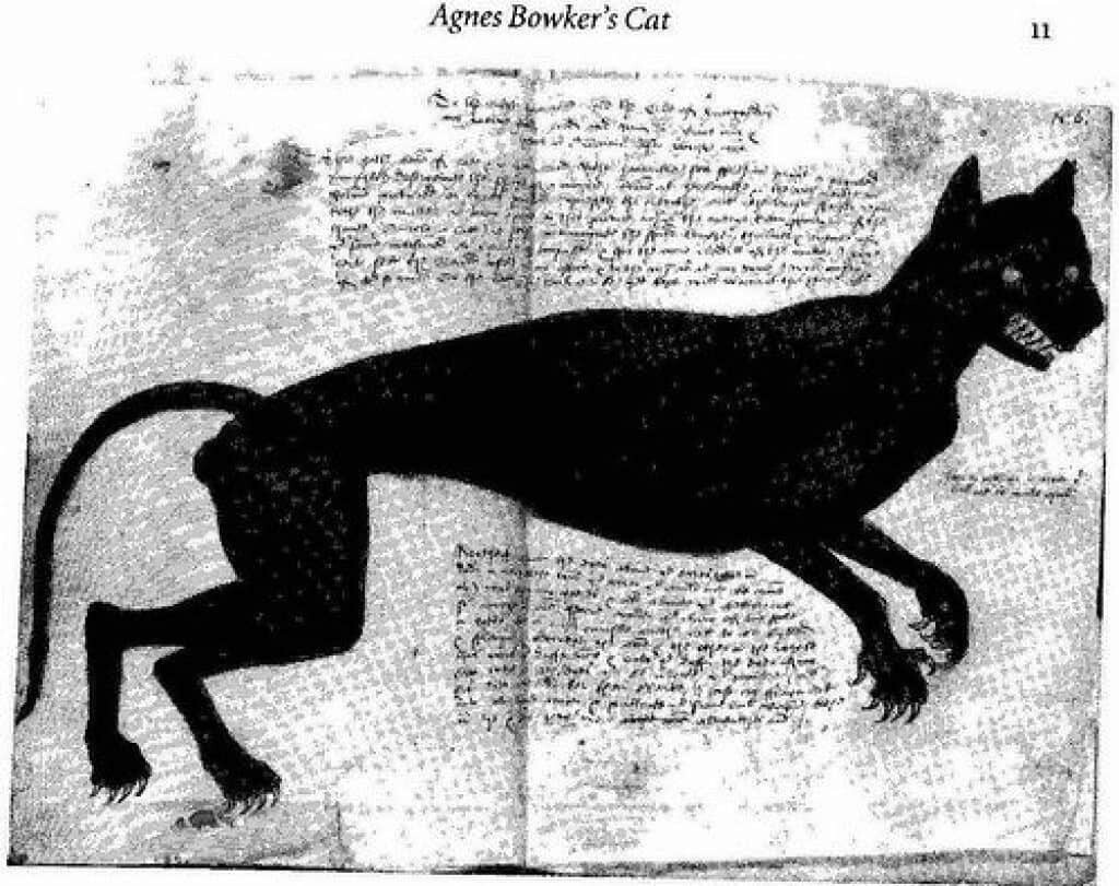 Anthony Anderson's depiction of Agnes Bowker's cat, 1569.