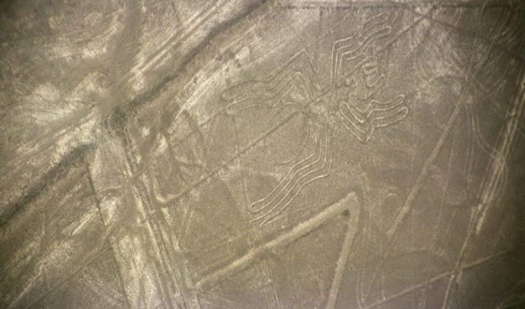 The Spider is one of the more famous Nazca lines of Peru. It measures 45 meters long.