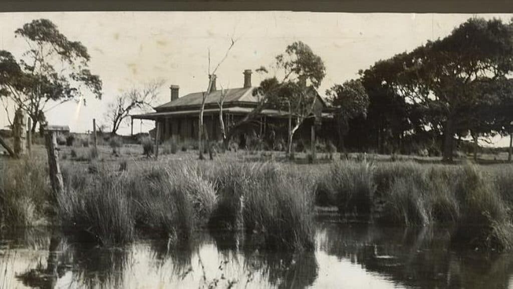 Margaret Clement's Tullaree home at the swamps.