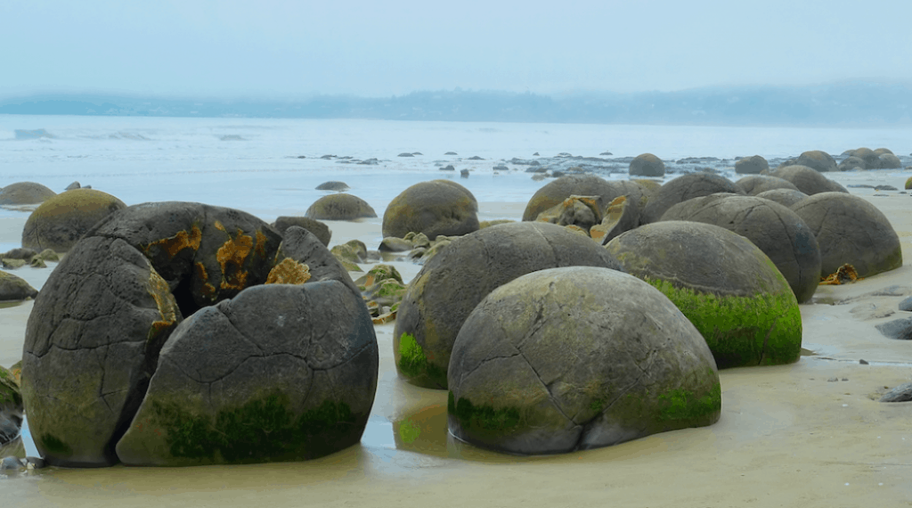 Moeraki Boulder on a foggy day