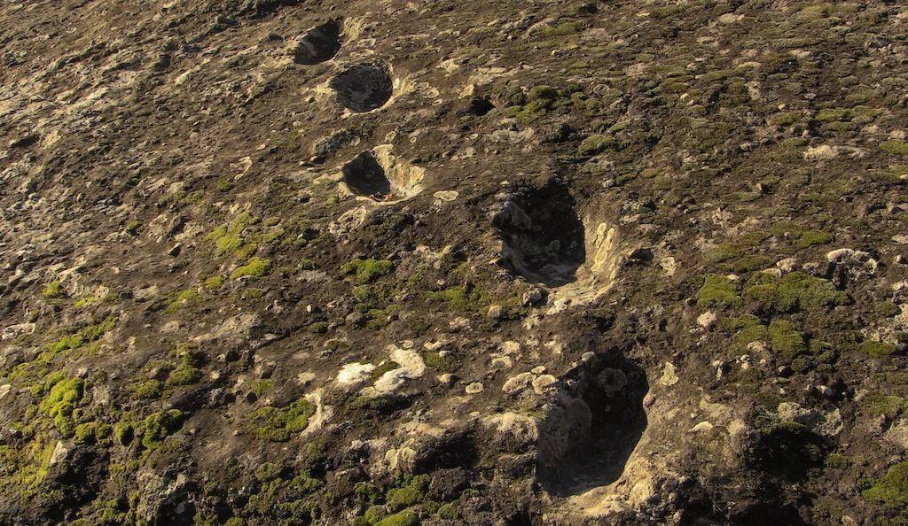 Prehistoric human footprints Trackway A at Foresta, Roccamonfina.