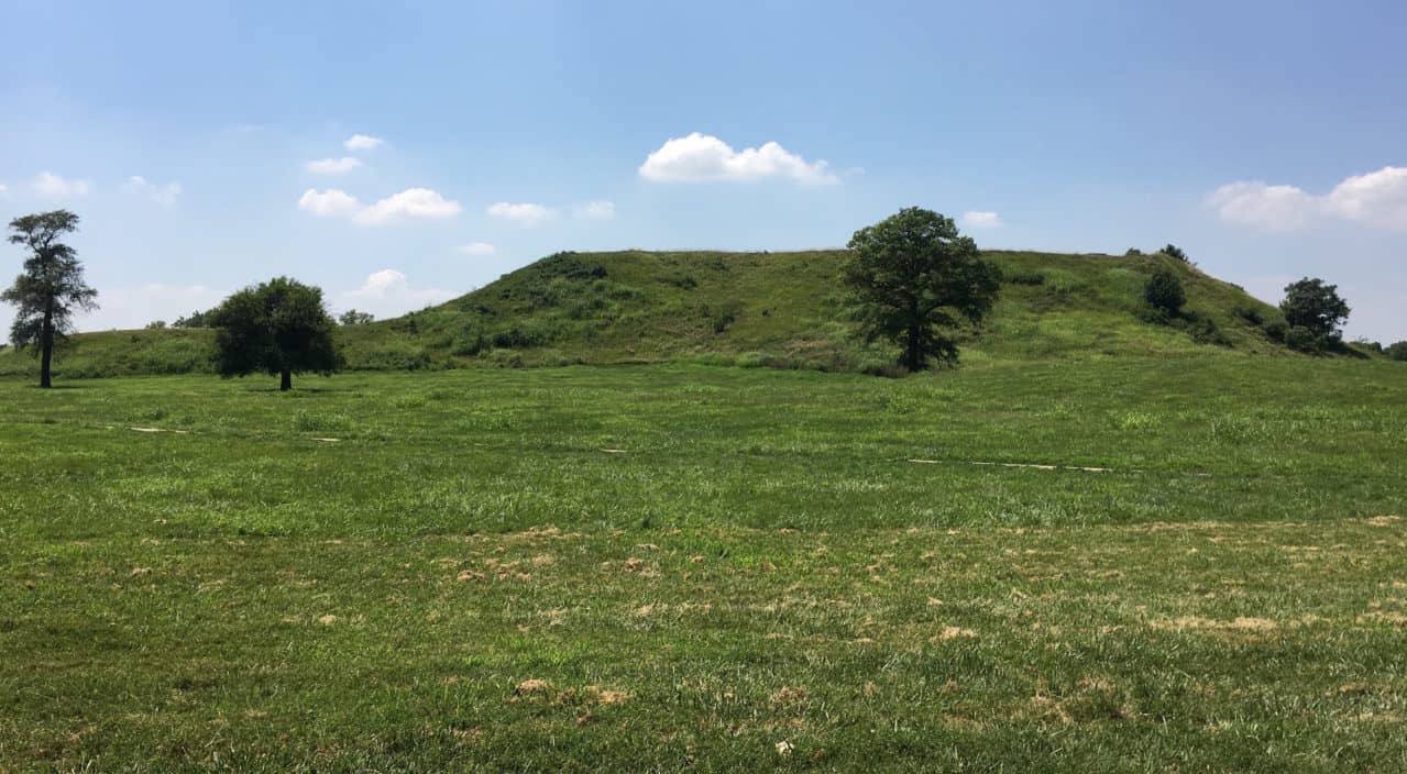 Monks Mound looking west.
