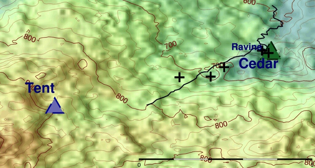 Incident map showing tent and cedar tree.