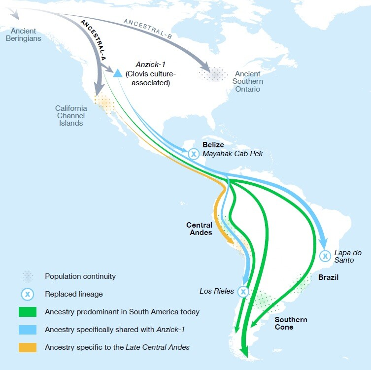 Migration routes into the Americas.