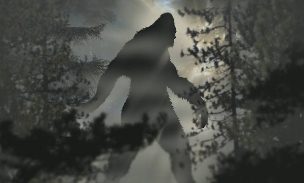 Bigfoot in the Bennington Triangle