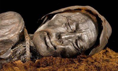 bog body tollund man