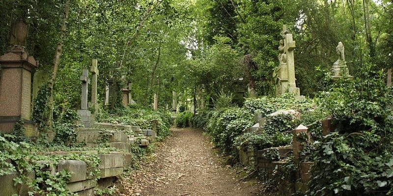 The Highgate Cemetery