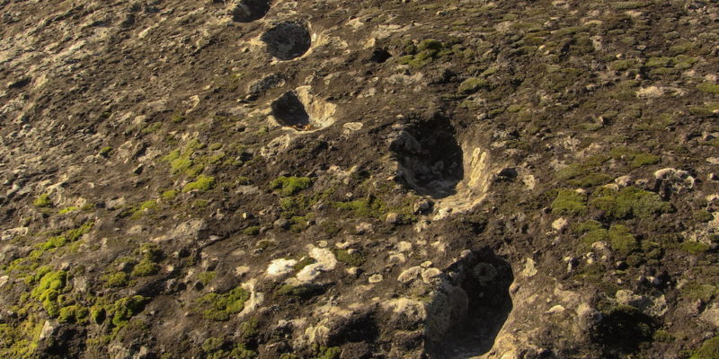 Prehistoric Human and Animal Tracks at Roccamonfina, Italy