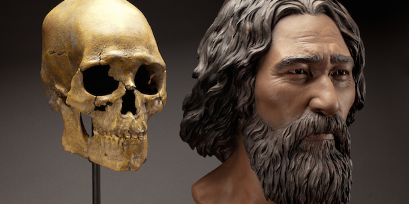 The Story of Kennewick Man: From Discovery to Reburial
