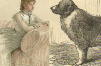 """Attack on Lady Florence Dixie: """"Saved by Her St Bernard"""""""