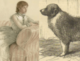 "Attack on Lady Florence Dixie: ""Saved by Her St. Bernard"""