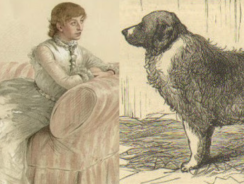 "Attack on Lady Florence Dixie: ""Saved by Her St Bernard"""