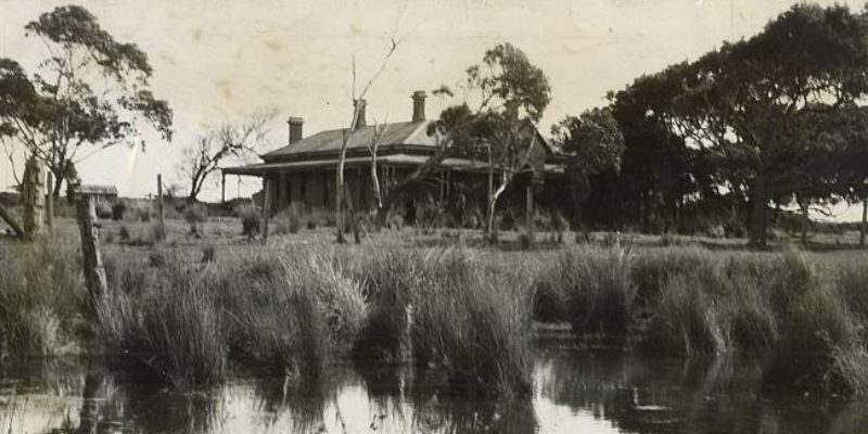 Lady of the Swamp: Margaret Clement